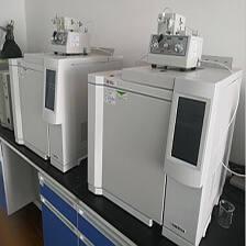 氣相色譜儀苯系物檢測儀