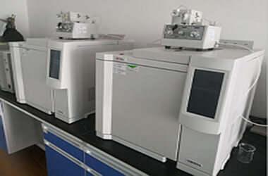 气相色谱甲醛检测法