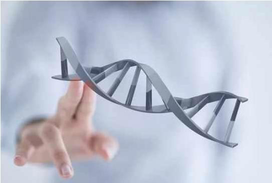 男性精液DNA异常能不能做试管婴儿