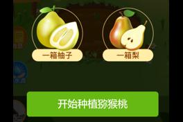 贝店果园如何玩?怎样快速得到真水果?