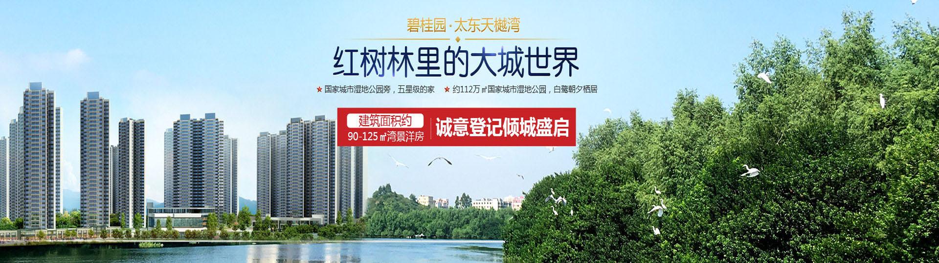 惠州大亚湾碧桂园太东天樾湾