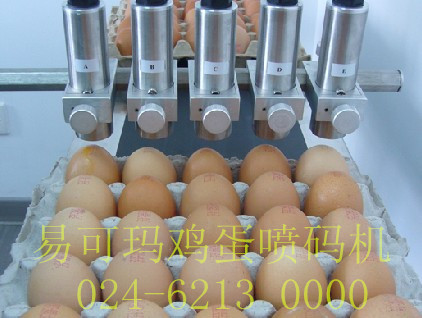 易可瑪雞蛋噴碼機A680