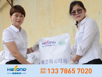 海扬品牌粒径12±2um湿法云母粉 HY-TM3