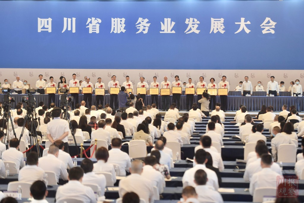 会长王涛博士代表海归参加四川省服务业发展大会并受表彰