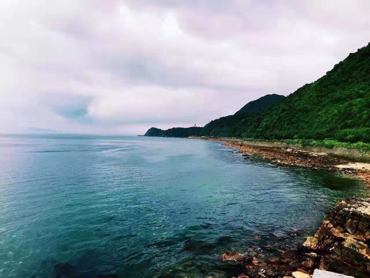 杨梅坑海岸线