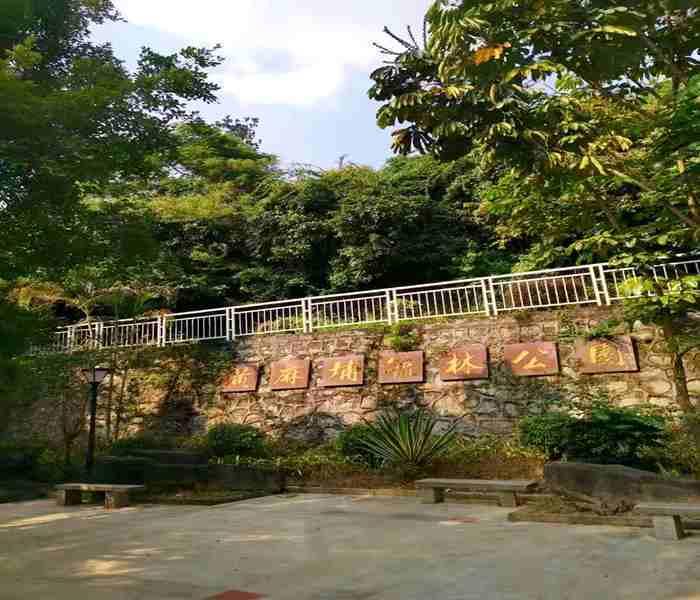 深圳大浪小产权房,上合花园里