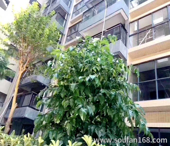 塘厦小产权房-丽枫大厦三栋3栋花园小区200套临近塘厦高铁站