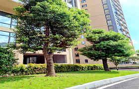 凤岗小产权信息网-凤岗花园,5栋大型花园小区,双层地下停车场
