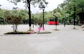东莞道滘小产权房-地标中心三栋980户,22层高,自带空中花园