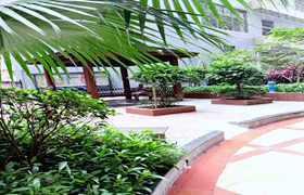 「布吉村委统建楼出售」-南湾花园6栋花园小区房