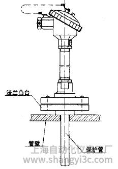 WRN,WRE-4318法兰套管式热电偶安装图片