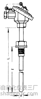 WRP-230铂铑热电偶安装图片及尺寸