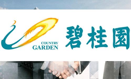 木别墅生产厂家服务客户碧桂园