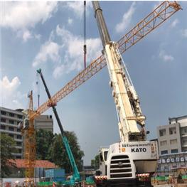 中联D1500塔吊