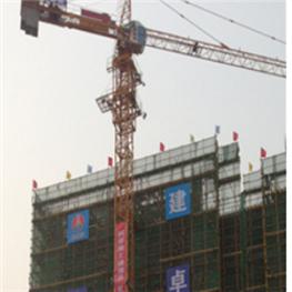 中联qtz125(tc6015)塔吊