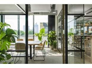 室内绿化的基本原则