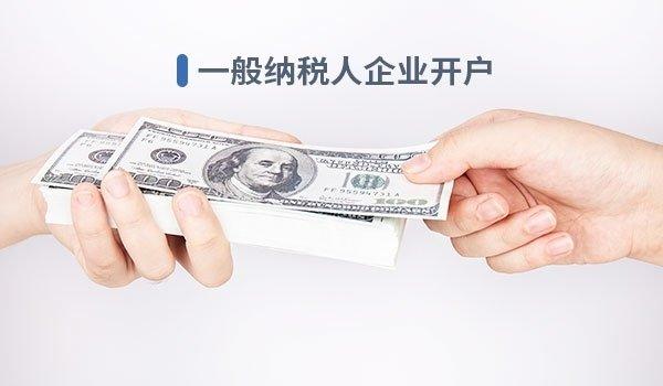 一般纳税人记账(年付)