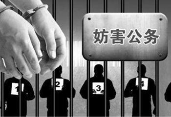 被告人陆某犯妨害公务罪一案的刑事判决书