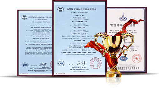 公司藏香猪获奖证书和奖杯图片