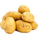 夜盘产品-马铃薯