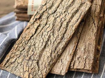 杜仲中草药与药理大全——木部篇