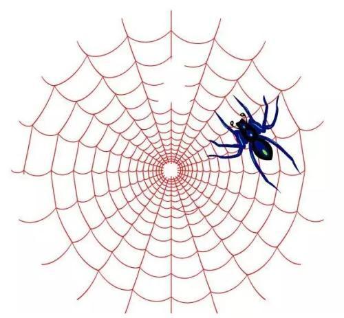 蜘蛛池搜索引擎霸屏技术引爆流量插图