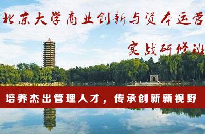 北京大学商业创新与资本运营