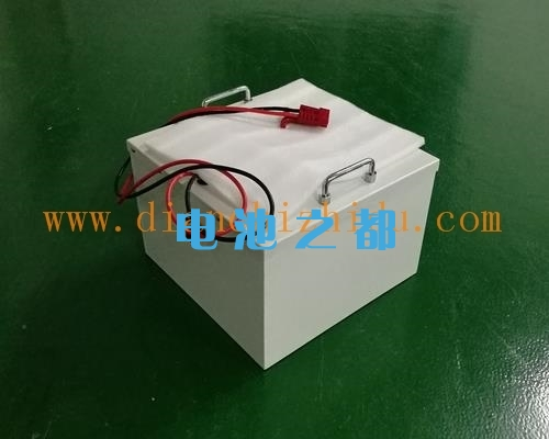 48V观光船用锂电池组