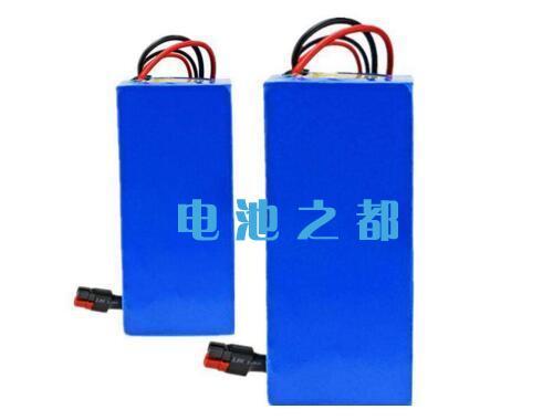 48V10A和48V20A电动车电池