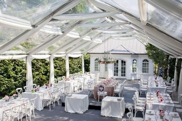Outdoors Wedding Transparent T ...