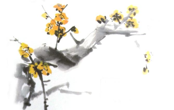 国画梅花用什么颜料之国画黄色梅花
