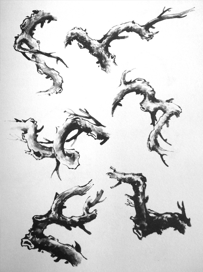 梅花树枝的画法各种形态