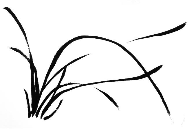 国画兰花的画法兰叶-1
