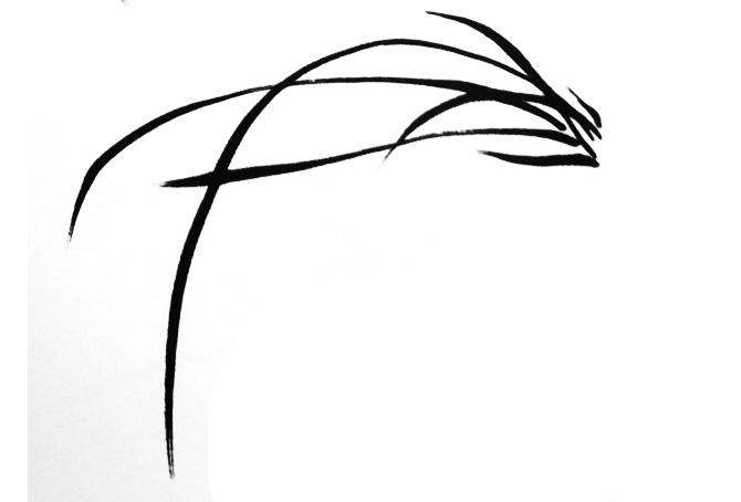 国画兰花的画法兰叶-2