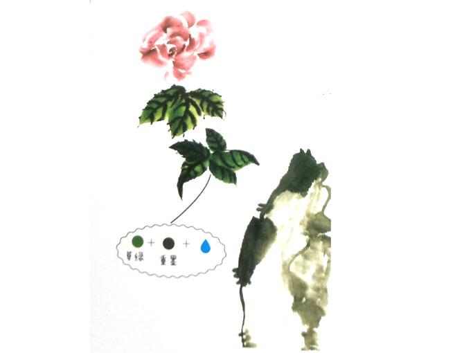 月季花的画法-2