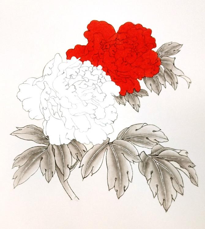 牡丹花的画法步骤2