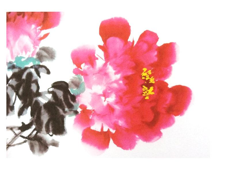 画写意牡丹花的步骤示范画
