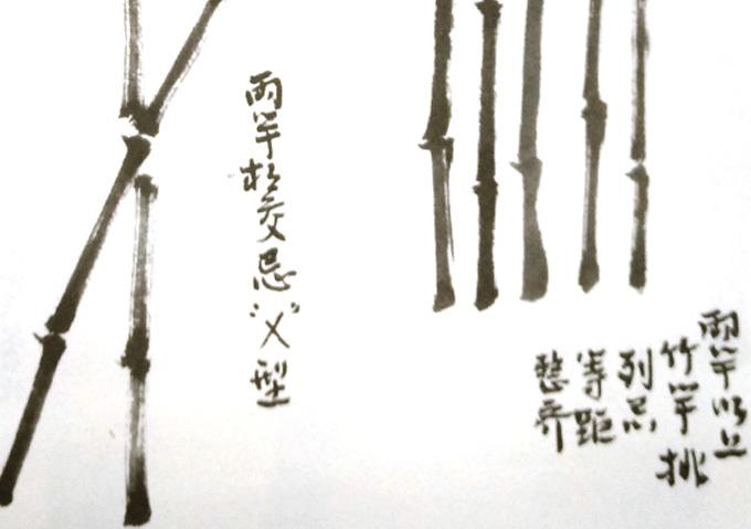 国画竹子的画法-小枝画法-3
