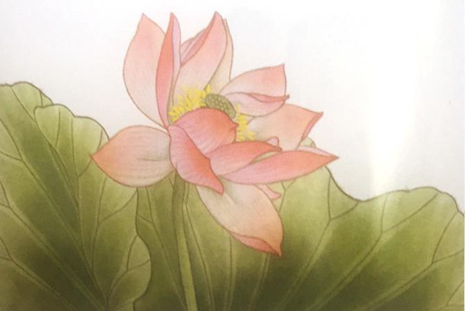 工笔花鸟画法-4