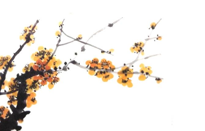 画梅花的颜料所画黄梅
