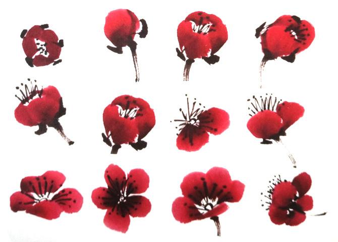 梅花初期花蕾之没骨法画法