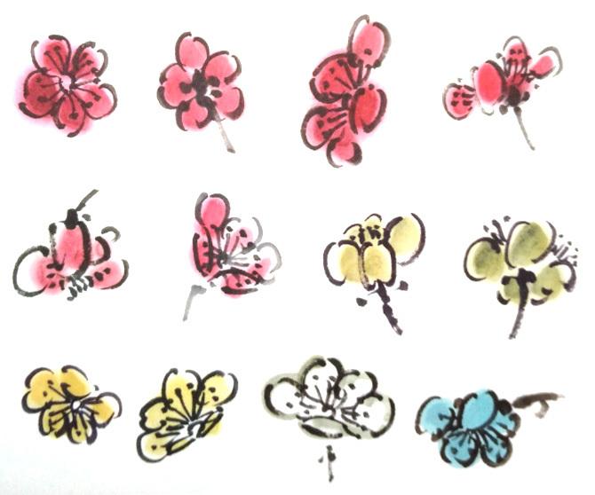 梅花初期花蕾之双勾填色法画法