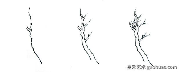 画树的步骤-1