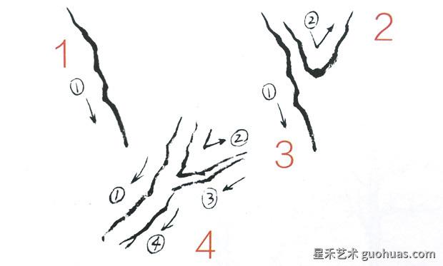 画树的步骤-2
