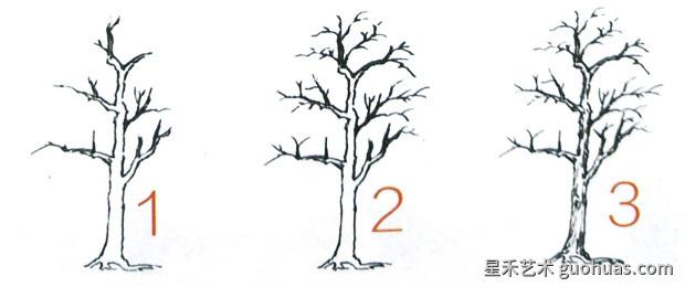 画树的步骤-3