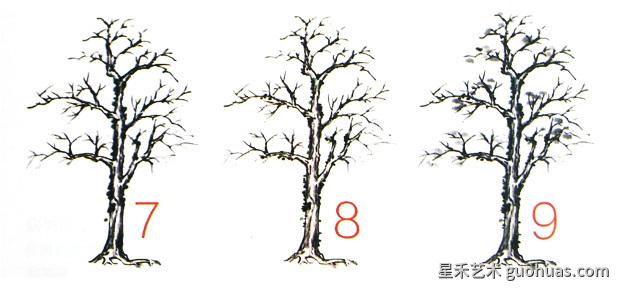 画树的步骤-5
