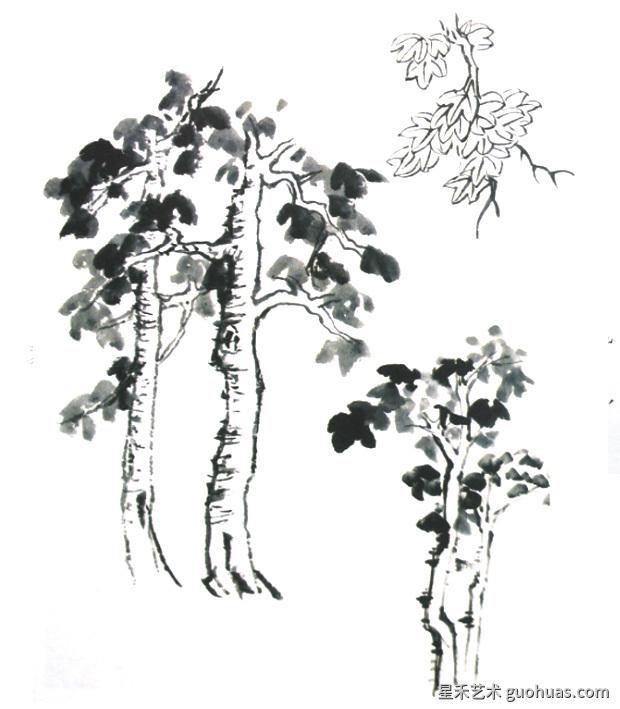 梧桐树的画法