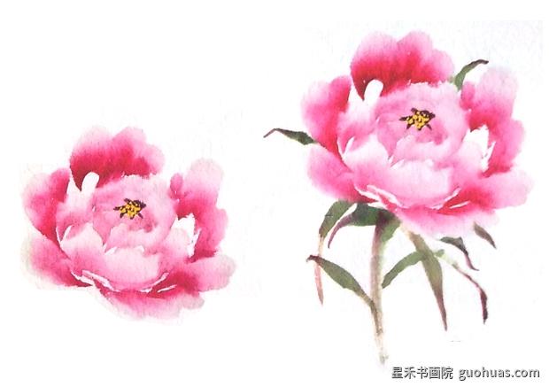 中国画牡丹花蕊的基本画法
