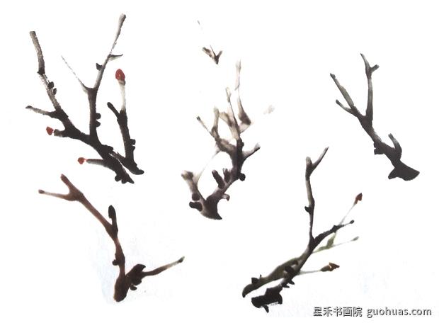 牡丹水墨画树枝的画法