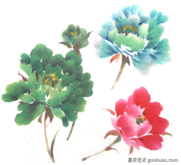 牡丹中国画花头的基本画法